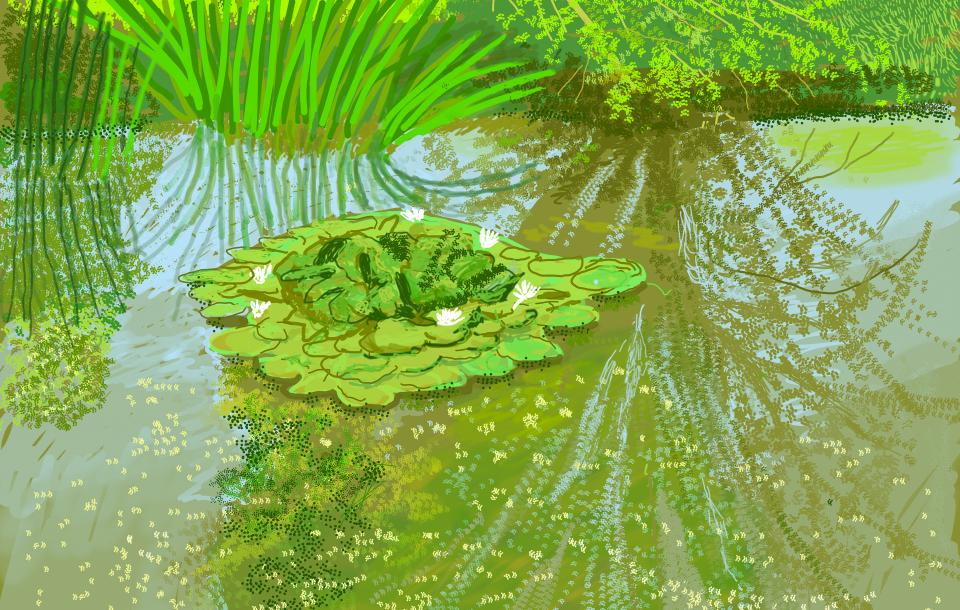 Ipad painting of a pond with lilies by David Hockney