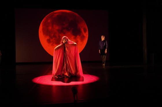 Performance d'Ebale Zam Martino